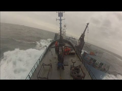 Boat collision footage: Sea Shepherd ship rammed by Japanese whaling vessel