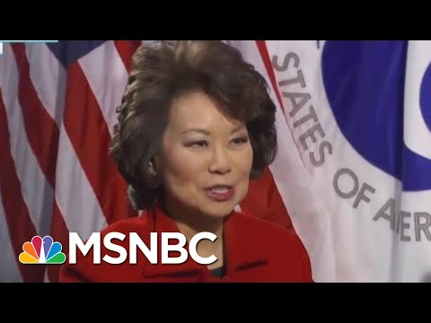 House Probing Elaine Chao On Questions Of Conflict With Family Business | Rachel Maddow | MSNBC