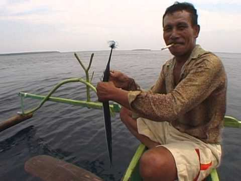 kite fishing in Indonesia film...