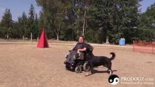 Zito Running A Blind