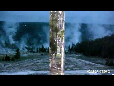 Blue Dawn!  BIG Steamer Ahead! @Yellowstone Bison!