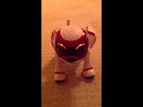 tekno-toy-robot-dog!!!