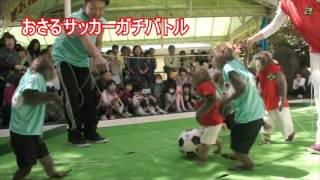 日光さる軍団では今年のGWより、リオオリンピック日本選手団応援イベン...