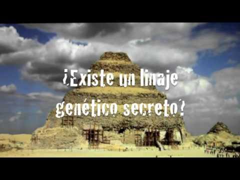 EL SECRETO DE EVA -NOVELA-