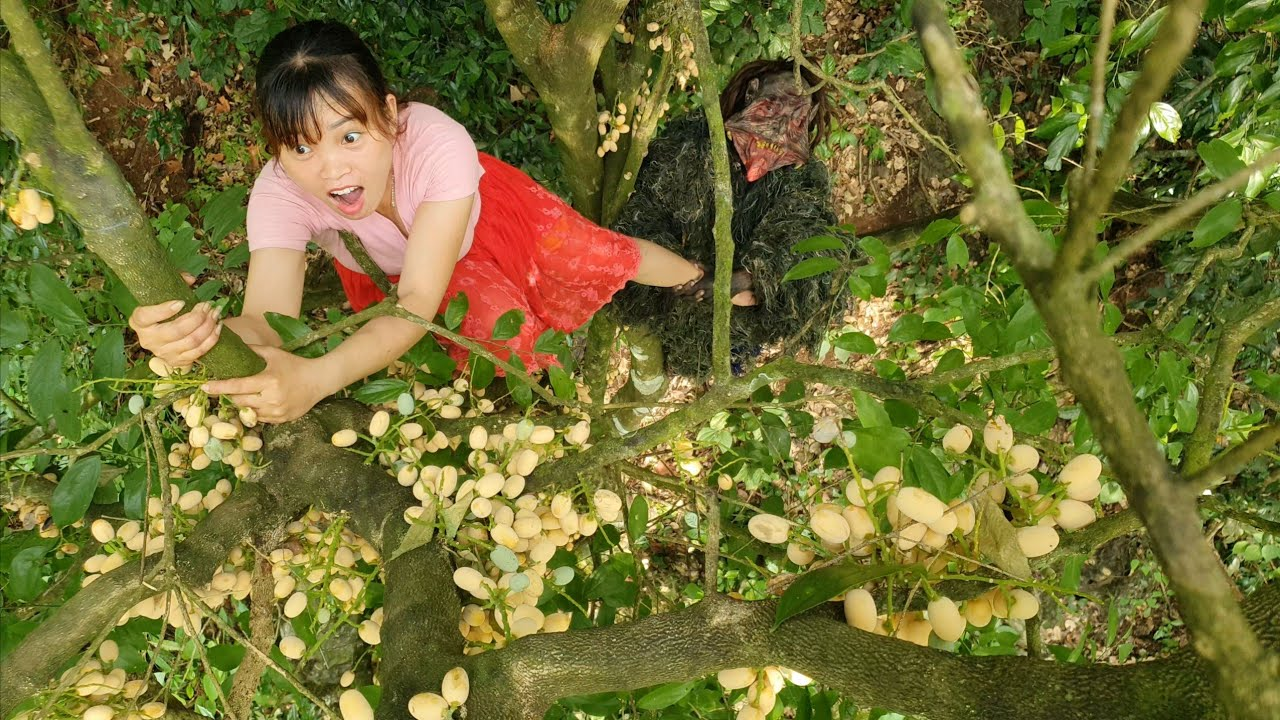 Girl Gathering A Strange Fruit And Being Attacked By Zombies