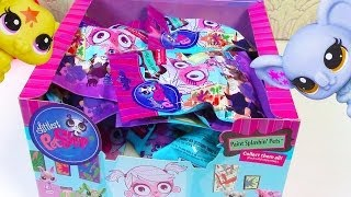 LPS Blind Bag HAUL Littlest Pet Shop Paint Splashin BOX case Part 2 toy review opening