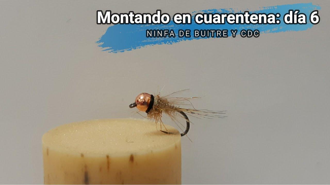 Fliegentom Set de 6 moscas de mayo con cuerpo extendido