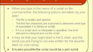 Script Interpreters
