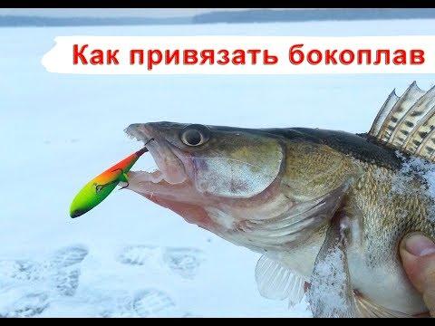 Как привязать бокоплав. Азбука зимней рыбалки.