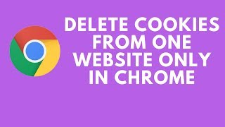 Delete Cookies From One Website Only in Chrome