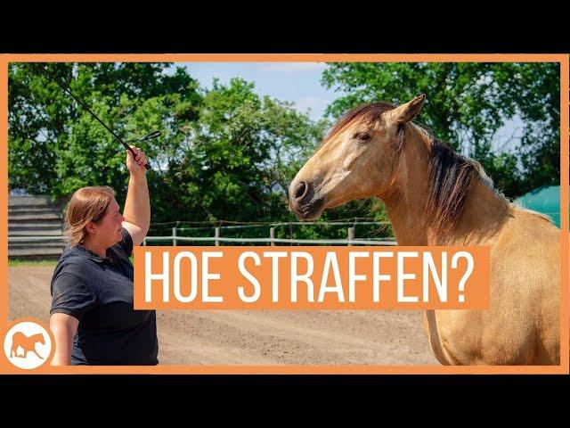 Wanneer en hoe straf je jouw paard?