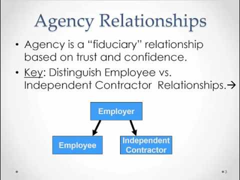Introduction to Agency Law