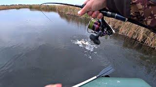 ВОТ ЭТО ПОКЛЁВКА Ловля щуки осенью на воблер Рыбалка на реке