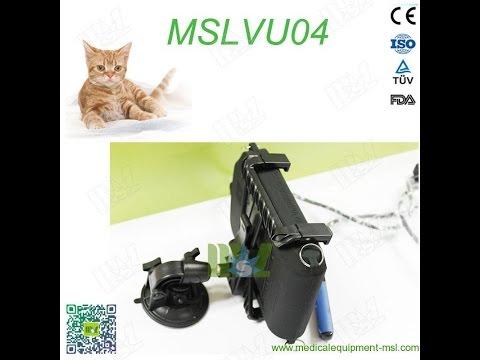 Veterinary Ultrasound MSLVU04 Video