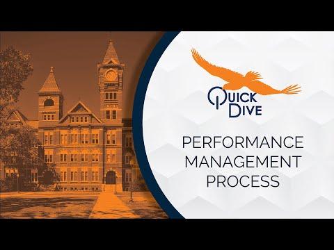 Performance Management Process QuickDive