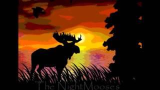 The NightMooses - Tositarkoituksella (Live)