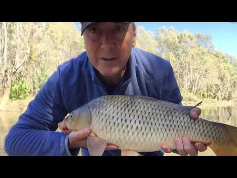 Fishing The Goulburn River