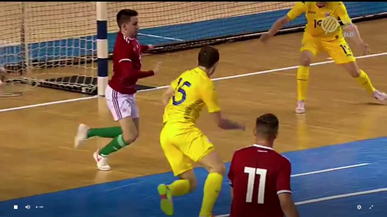 Сборная Украины по футзалу дважды подряд обыграла Венгрию - новости футбола  - Спорт 24