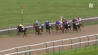 Vidéo de la course PMU PRIX DE LA CROIX MARQUET