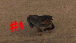 Обзор модов GTA San Andreas. Часть 1. Мистическая собака