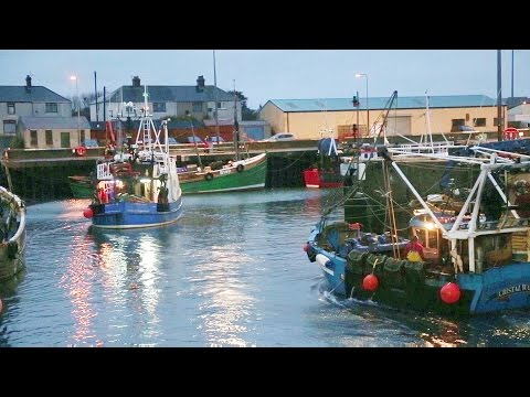 Promoting The Northern Ireland Seafood Industry | 02
