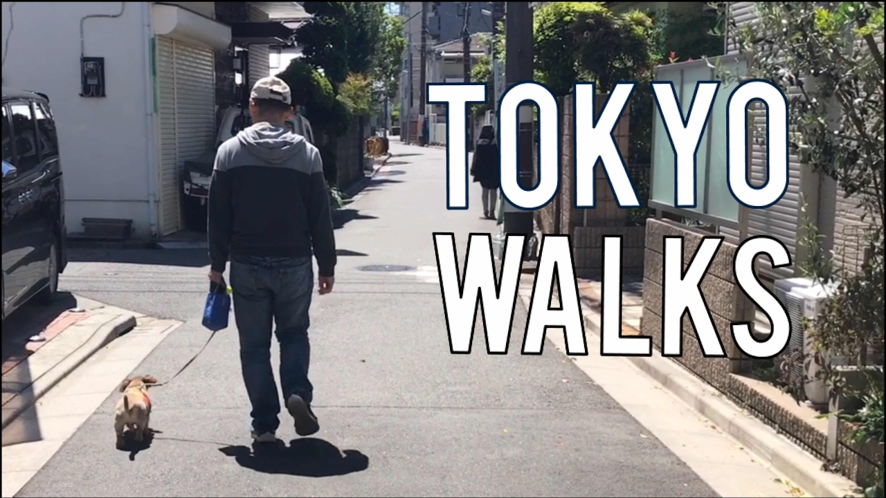 Japanese Residential Streets-NOGATA Tokyo Japan