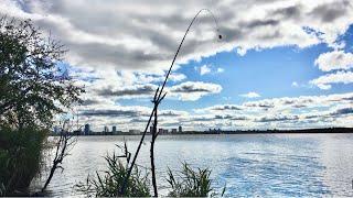 Стрим Осенняя рыбалка на фидер ловля леща осенью ВИЗ