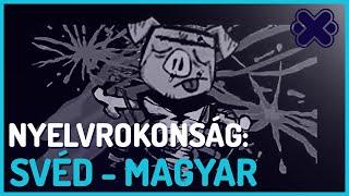Svéd - Magyar Nyelvrokonság (Finntroll-Under Bergets Rot)
