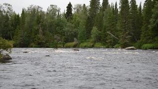 Река Нота Мурманская область / The Nota River Murmansk region