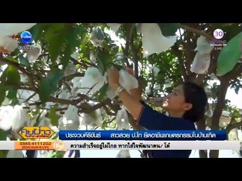 สาวสวย ป.โท ทิ้งชีวิตเมืองกรุง ยึดอาชีพเกษตรกรในบ้านเกิด   สำนักข่าวไทย อสมท
