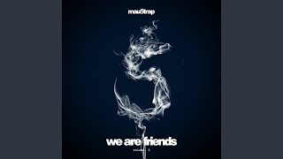 We Are Friends, Vol. 5 (Continuous Mix)
