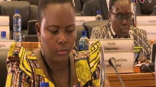 Youth unemployment and education dominate Pan-African parliament session