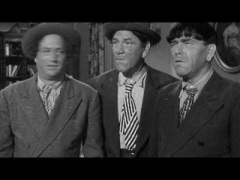The Three Stooges 145 Booty And The Beast 1953 Shemp, Larry, Moe