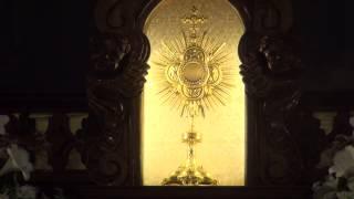 Sv.Mise VisSvetakas Jaunavas Marijas  Dz.D.Sv.  4.
