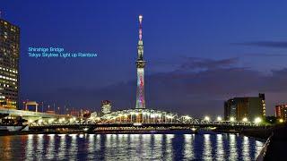 Shirahige Bridge Tokyo Skytree Light Up Rainbow 白鬚橋 ライトアップ 東京スカイツリー レインボー 夜景 公式は、2020年8月1日から点灯!