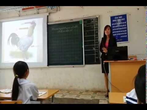 Chuyên đề Tự nhiên và Xã hội lớp1 bài 27: CON MÈO