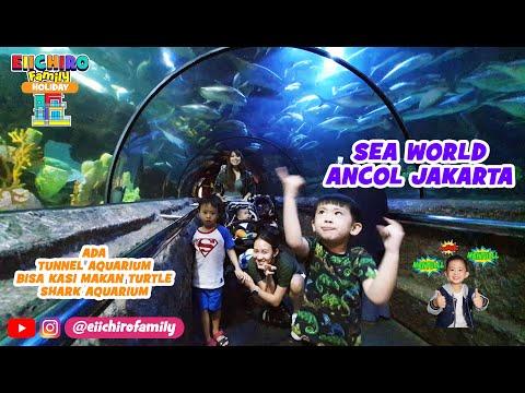 sea-world-ancol-jakarta-utara-terowongan-aquarium-raksasa-terbesar-tempat-liburan-anak-laut-seaworld