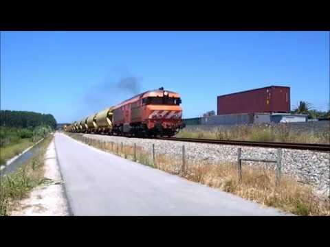 Comboio de Cereais n.º 50336 - Regueira de Pontes
