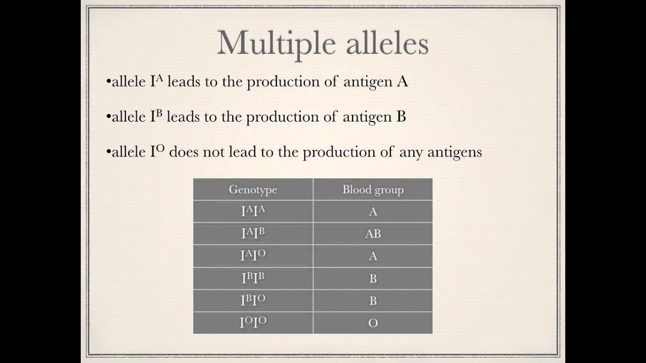 A level. O.5. Codominance and multiple alleles. Ms Cooper - YouTube