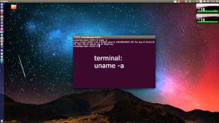 How to check your Kernel version in Linux - UBUNTU