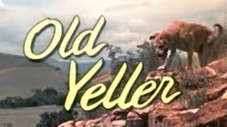 Old Yeller - Disneycember