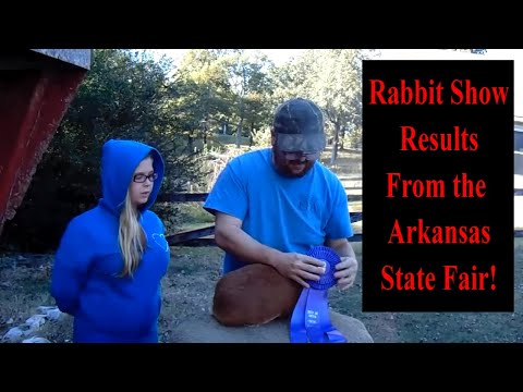 Showing Rabbits - Rabbit Show Results From the Arkansas State Fair Rabbit Show