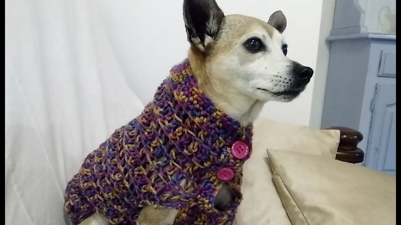 Easy Crochet Dog Sweater Any Size Tutorial Youtube