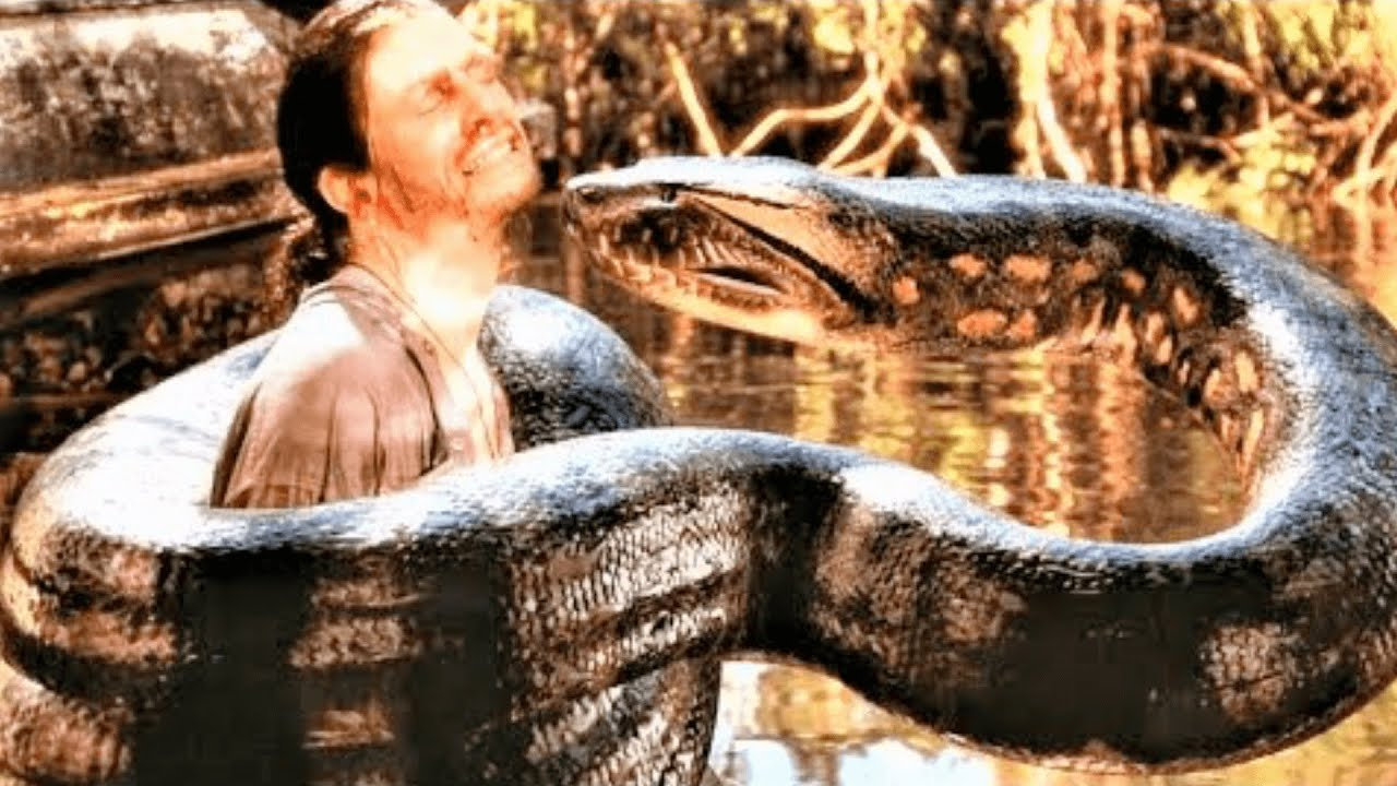 Anaconda 1+2 (2004) Film Explained in Hindi/Urdu | Anacondas Giant Snake vs. Hunters हिन्दी
