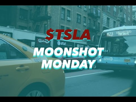 Tesla Model B (High Passenger-Density Urban Transport Vehicle)