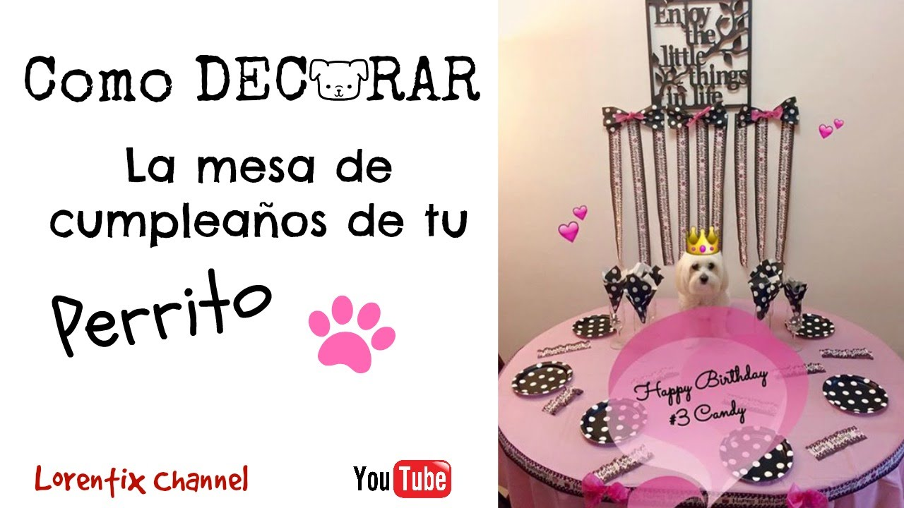 Como decorar la mesa de cumpleaños para tu Perro YouTube