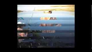 Платная рыбалка на карася. Улов умора