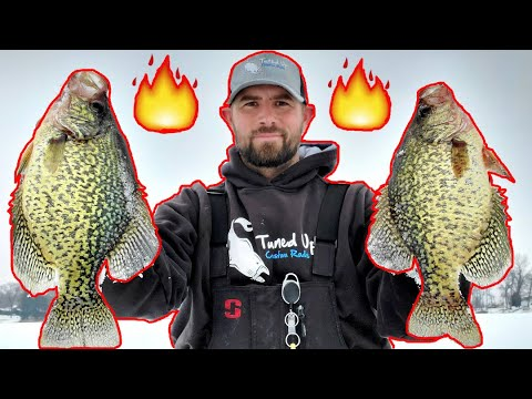 Holiday Harvest Solo Mission (Crappies)