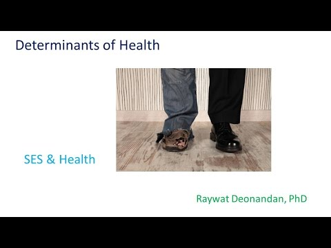 HSS1101D - 3 1 SES & health