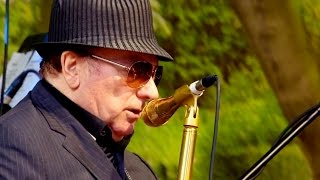 When van morrison performed on cyprus avenue in his hometown of belfast, the concert was an almost spiritual experience. bafta-winning director marcus robins...